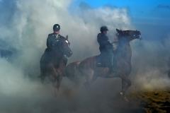 Gewenningsoefening paarden Prinsjesdag